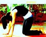 bhartiya yog sadhna-Marjari asan-samaj vikas samvad