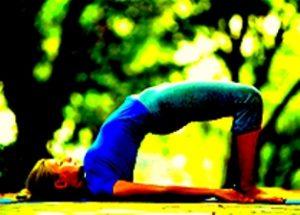 bhartiya yog-setubandhasan-samaj vikas samvad